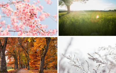 How to create your annual planning cycle using the rhythm of the seasons